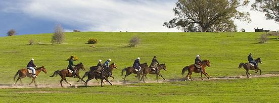 Uncle Nev's Trail Rides Upper Plenty